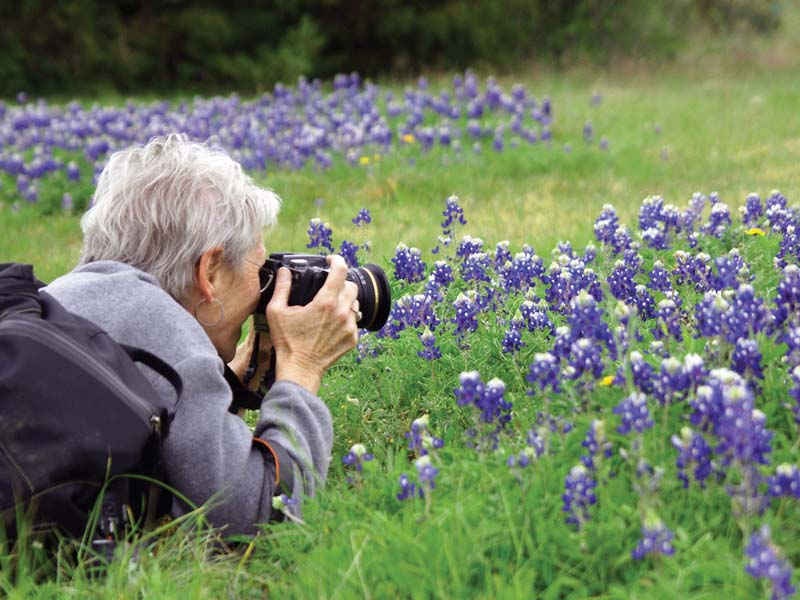 Dr. Cynthia Nunnally Wood '68 finds, photographs, documents and maps wildflowers.