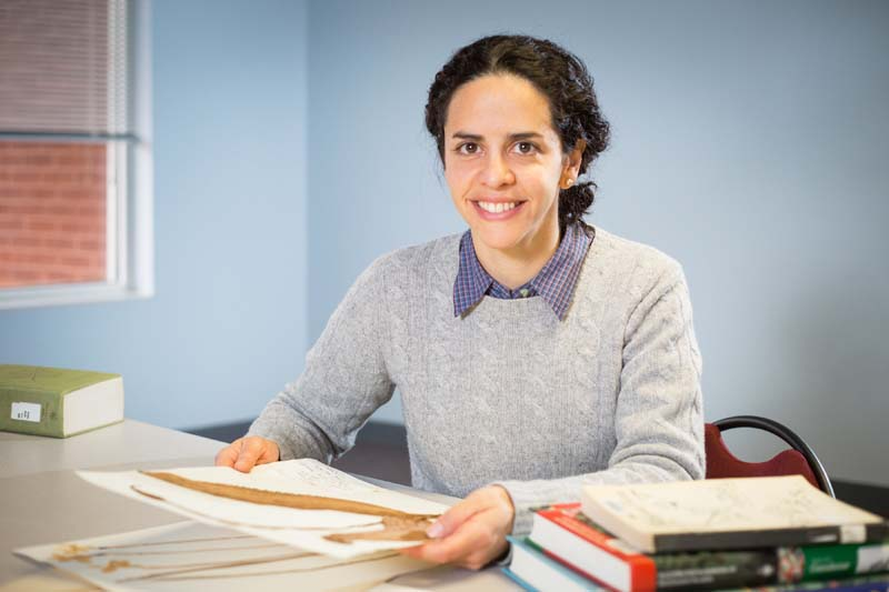 Erika Gonzalez-Akre, the curator of Longwood's Harvill-Stevens Herbarium, deserves much of the credit for bringing the riches of the collection to light and making it more accessible to researchers.