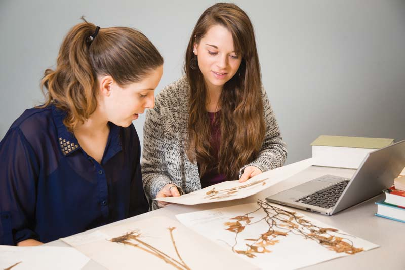 A National Science Foundation grant is funding the work of Patricia Hale '15 (left), of Bedford, and Sarah Slayman '15, of Mechanicsville, as they digitize the world's largest collection of native Virginia plants, currently housed in the basement of Longwood's Greenwood Library.