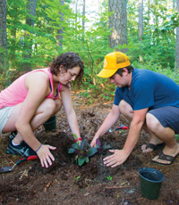 Left: Jessica Gatanis '17 and Barrett Nicks '16 plant a plant native to the region (Salvia Liatris) in the forest garden at Hull Springs Farm.