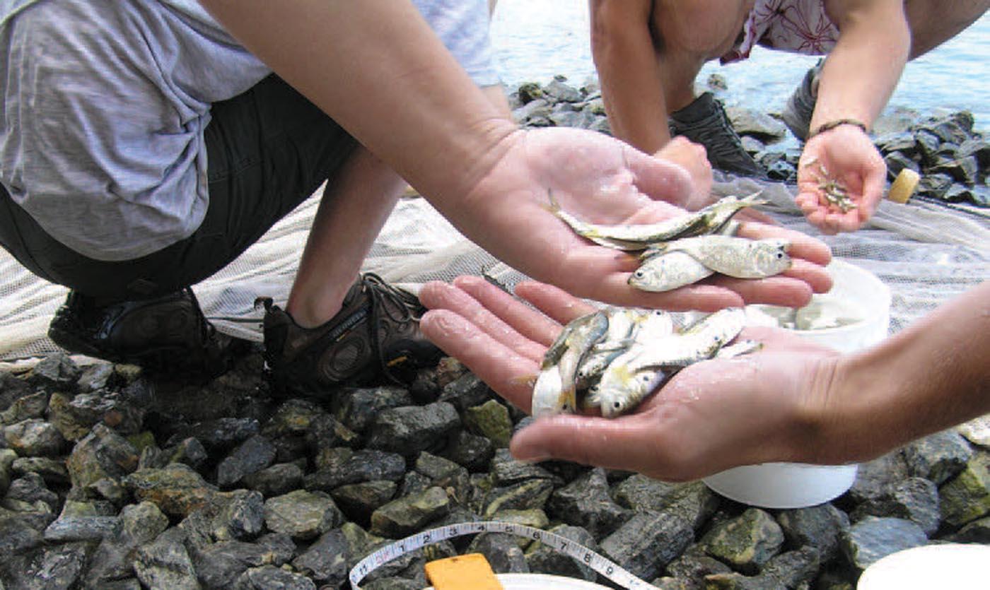 Environmental sciences degree program provides plenty of hands-on learning opportunities.